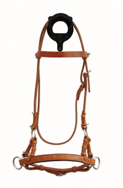 Sidepull Harness leather noseband flach