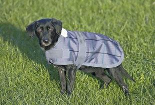 Hunde-Regendecke 55cm, Fleece gefüttert